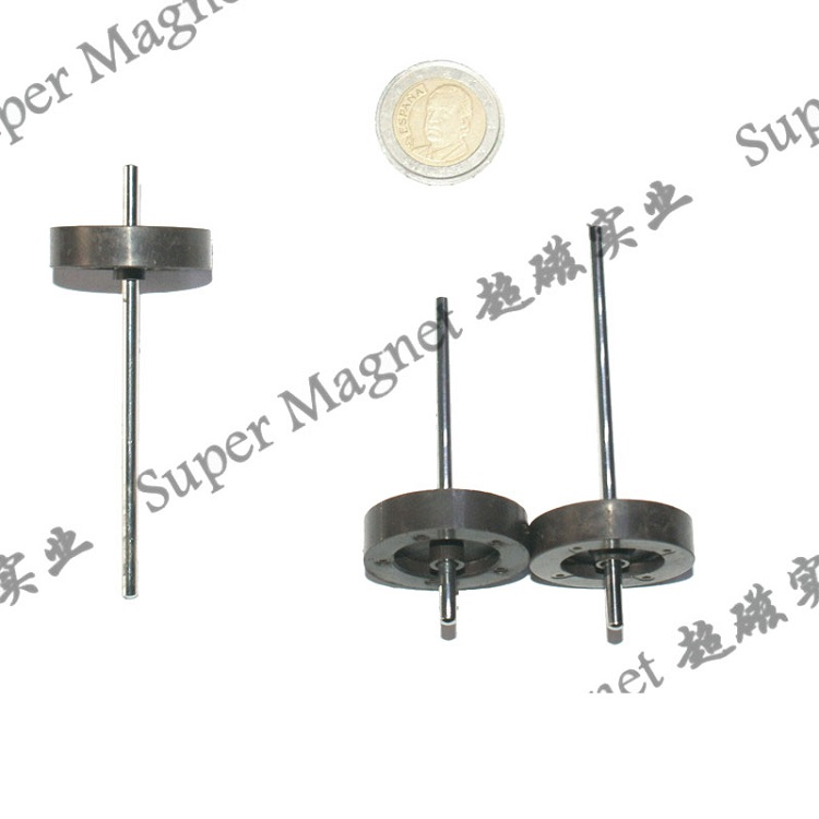 AIR 30*8mm  Multipole ring injection magnets 8 poles www.spmagnet.com